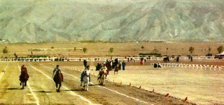 内蒙古呼和浩特赛马场-内蒙古集锦 内蒙古自治区