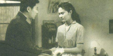白桦林中的哨所影评_电影《白鸽与金鹿》等 - 电影回顾 - 家乡网